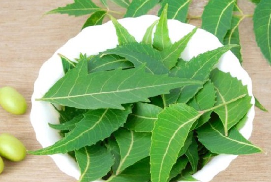 neem face packs recipes 2