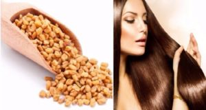 methi seeds for hair growth