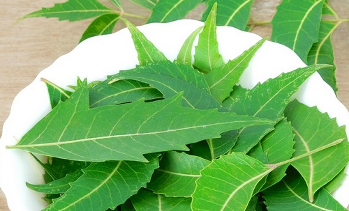 neem for men's dandruff care