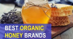 9 Best Organic Honey Brands in India