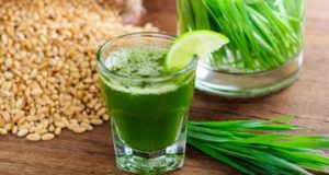 best wheatgrass juices in india