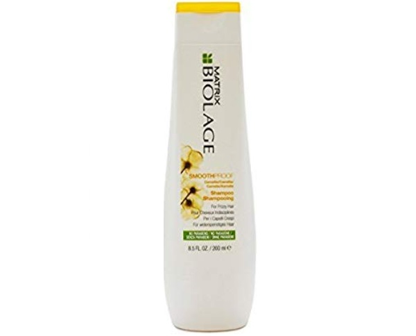 MATRIX By fbb Biolage Smooth Proof Smoothing Shampoo for Frizzy Hair